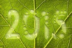 2015, Regentropfen auf einem grünen Blatt Lizenzfreie Stockfotos