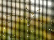 Regentropfen auf einem Moskitonetz stockfoto