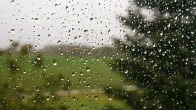 Regentropfen auf Fensterglas stock footage