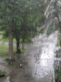 Regentropfen auf Fensterglas Stockbild