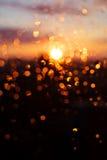 Regentropfen auf Fensterglas stockfotos