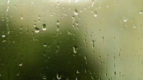 Regentropfen auf Fensterglas stock video