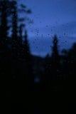 Regentropfen auf Fensterscheibe Stockbilder
