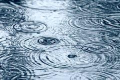 Regentropfen auf Pfütze Stockfoto