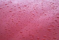 Regentropfen auf roter Autohaube Stockbilder