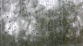 Regentropfen, die hinunter ein Fenster laufen stock video