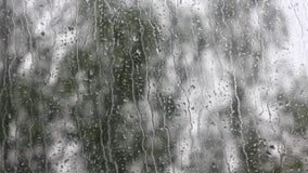 Regentropfen, die hinunter ein Fenster laufen stock video footage