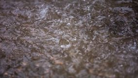 Regentropfen fallen in das Wasser Langsame Bewegung stock video footage