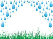 Regentropfen mit Gras Stockfotos