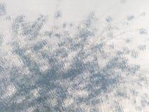 Regentropfen und undeutlicher Baumhintergrund Lizenzfreies Stockbild