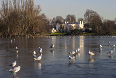 Regents Park in London Stock Photo
