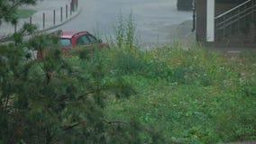 Regenval in woonwijk, 4K klem stock video