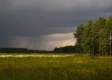 Regenverwachting op het gebied met bloemen Royalty-vrije Stock Foto's