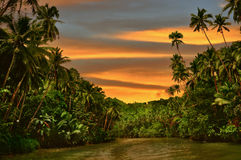 Regenwald-Fluss-Sonnenuntergang Stockfotos