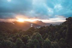 Regenwald Nationalparks Dorrigo, New South Wales, Australien stockfotografie