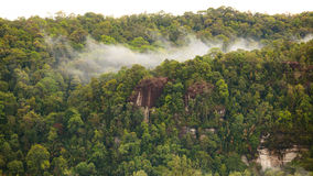 Regenwaldhügelansicht stockfotos