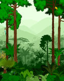 Regenwaldvektorillustration Lizenzfreies Stockfoto
