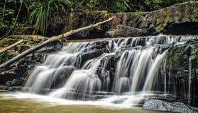 Regenwaldwasserfälle Lizenzfreies Stockfoto