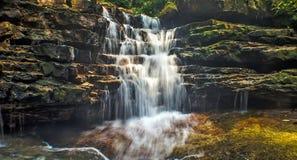 Regenwaldwasserfälle Stockfoto