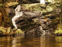 Regenwaldwasserfall Lizenzfreie Stockbilder