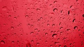 Regenwassertropfen stock footage