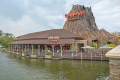 Regenwoudkoffie bij Disney-de Lentes stock afbeelding