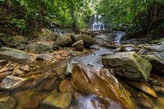 Regenwoudwaterval Royalty-vrije Stock Fotografie