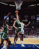 Reggie Lewis Boston Celtics Royaltyfria Bilder