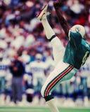 Reggie Roby, Miami Dolphins στοκ εικόνα με δικαίωμα ελεύθερης χρήσης
