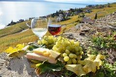Região de Lavaux, Switzerland Imagem de Stock Royalty Free