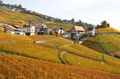 Região de Lavaux, Switzerland Imagem de Stock