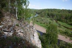 Região de Sverdlovsk Rússia Córregos dos cervos do parque natural Fotografia de Stock