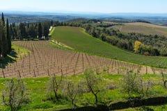 Região do Chianti, Itália - 21 de abril de 2018: Paisagem rural da terra, árvores de cipreste, vinhedos e oliveiras de Castello d imagem de stock