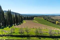 Região do Chianti, Itália - 21 de abril de 2018: Paisagem rural da terra, árvores de cipreste, vinhedos e oliveiras de Castello d imagens de stock