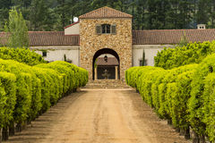 Região do vinho de Stellenbosch perto de Cape Town, África do Sul Fotografia de Stock