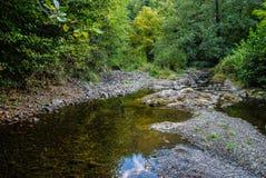 A região selvagem bonita Foto de Stock