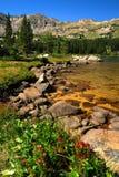 Região selvagem de Colorado imagens de stock