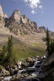 Região selvagem de Montana Fotografia de Stock