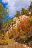 Região selvagem de montanha da Borda-sela da garganta-n de AZ_Grand Imagem de Stock Royalty Free