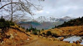 A região selvagem do inverno Imagens de Stock