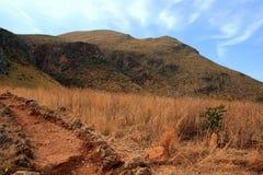 Região selvagem seca, queimada Fotografia de Stock Royalty Free
