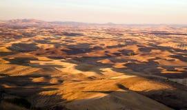 Região Washington Farmland Rolling Hills Agriculture oriental de Palouse imagens de stock