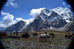 Región 1 de Shisha Pangma Imagen de archivo
