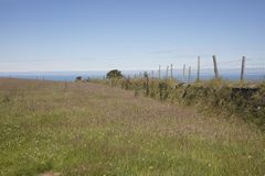 Región agrícola en Devon England del norte fotografía de archivo libre de regalías
