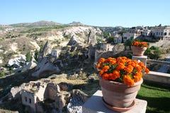 Región de Cappadocia y las flores foto de archivo