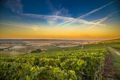 Región de Champán en Francia Una visión hermosa Foto de archivo