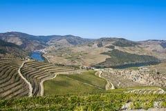 Región de Douro foto de archivo libre de regalías