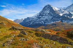 Región de Jungfrau Foto de archivo
