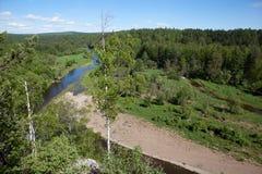 Región de Sverdlovsk Rusia Corrientes de los ciervos del parque natural Imágenes de archivo libres de regalías