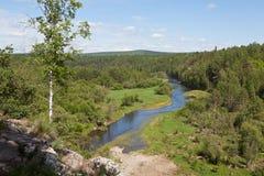 Región de Sverdlovsk Rusia Corrientes de los ciervos del parque natural Fotografía de archivo libre de regalías